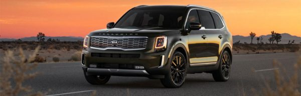 2021 Kia Telluride Overview in Raleigh, NC